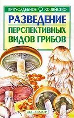 Разведение перспективных видов грибов