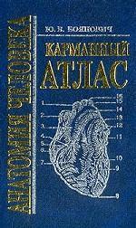 Анатомия человека. Карманный атлас