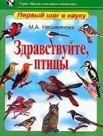 Здравствуйте, птицы