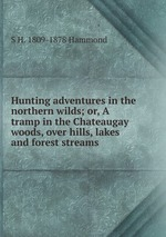 Hunting adventures in the northern wilds; or, A tramp in the Chateaugay woods, over hills, lakes and forest streams
