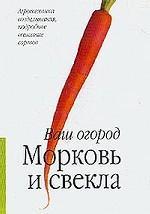 Морковь и свекла: Агротехника возделывания, подробное описание сортов