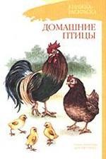 Домашние птицы. Книжка-раскраска