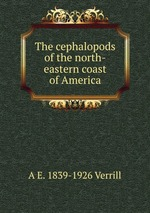 The cephalopods of the north-eastern coast of America