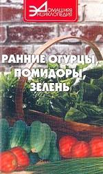 Ранние огурцы, помидоры, зелень