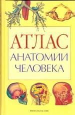 Атлас анатомии человека: Учебное пособие