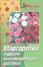 Маргаритки и другие красивоцветущие растения