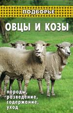Овцы и козы. Породы, разведение, содержание, уход