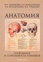 Учебный словарь. Анатомия. Толкование и сочетаемость терминов