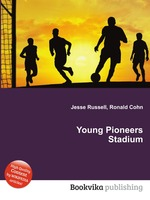Young Pioneers Stadium