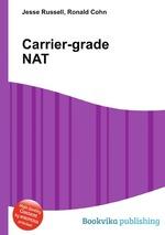 Carrier-grade NAT
