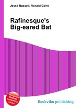 Rafinesque`s Big-eared Bat