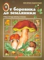 От боровика до земляники. Грибы и ягоды Европы и России