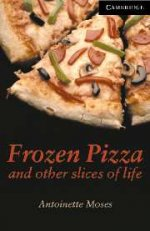Frozen Pizza and other slices of life. Level 6