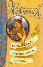 Белый Клык, Виннипегский волк и другие…