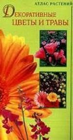 Декоративные цветы и травы