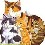 Ласковые котята. Книжка-игрушка
