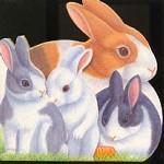 Прыгающие крольчата. Книжка-игрушка