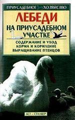 Лебеди на приусадебном участке