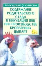 Содержание родительского стада и инкубация яиц при производстве бройлерных цыпля