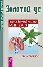 Золотой ус против болезней дыхания. Бронхит и астма