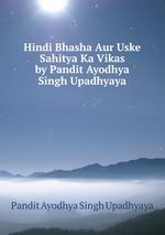essays in hindi about hindi bhasha ka vikas aur prayog