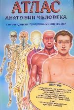 Атлас анатомии человека (малый)