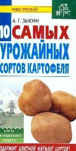 Десять самых урожайных сортов картофеля