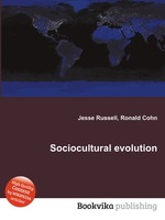 Sociocultural evolution