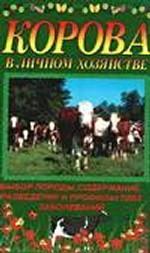 Корова в личном хозяйстве