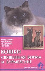 Кошки священная бирма и бурмезские