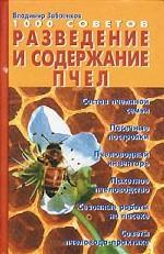 Разведение и содержание пчел. 1000 советов