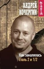 А. Н. Кочергин. Как закалялась сталь 2 и 1/2