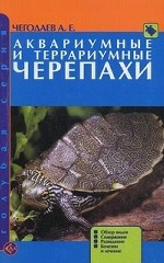 Аквариумные и террариумные черепахи. Обзор видов