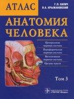 Анатомия человека Том 3