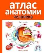 Атлас анатомии человека . 2-е издание, дополненное и переработанное