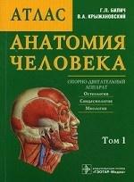 Анатомия человека Том 1
