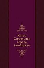Книга Строельная города Синбирска