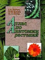 Атлас по анатомии растений