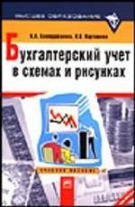 Бухгалтерский учет в схемах и рисунках: учебное пособие