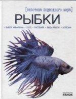 Рыбки. Экзотика подводного мира