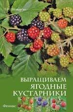 И. В. Ефимова. Выращиваем ягодные кустарники