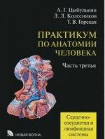 Практикум по анатомии человека ч3