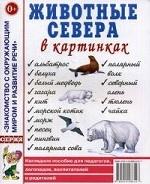 Животные севера в картинках. Наглядное пособие для педагогов, логопедов, воспитателей и родителей