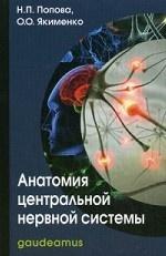 Анатомия центральной нервной системы. Учебное пособие для вузов. Гриф МО РФ