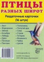 "Раздат. карточки ""Птицы разных широт"" (63х87мм)"