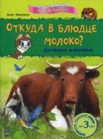 Откуда в блюдце молоко? Домашние животные