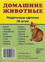 Домашние животные. 16 раздаточных карточек с текстом на русском и английском языках