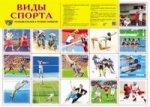 Дем. плакат ВИДЫ СПОРТА А-2