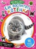 Как воспитать котёнка