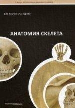 Анатомия скелета.Гриф УМО